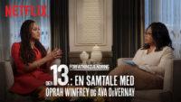 13th Netflix / Moreflix.dk