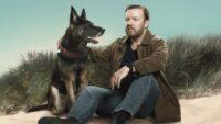 After Life sæson 2 Ricky Gervais Netflix / Moreflix.dk