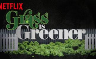 Grass is Greener Netflix Snoop Dogg hash pot cannabis / Moreflix.dk